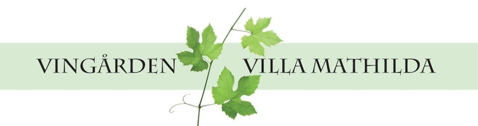 Vingården Villa Mathilda
