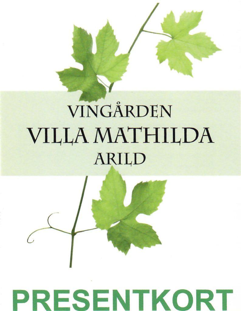 besöka vingårdar moseldalen
